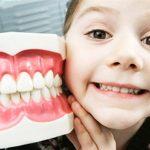 Полезные и вредные продукты для молочных зубов