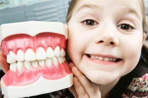 Прорезывание, рост и выпадение зубов у ребенка