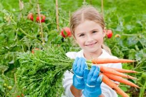 девочка, лето, морковь, весна, ребенок, дети, овощи