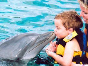 Дельфинотерапия: особенности лечения детей и взрослых
