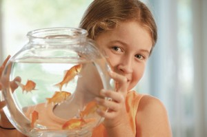Дитячі оповідання про тварин та природу: «Як сплять риби»