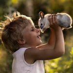 Как ухаживать за домашним кроликом