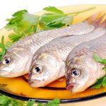 Рыба в детском питании: советы и рецепты