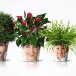 10 найкращих рослин для дитячої кімнати