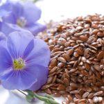 Як правильно приймати насіння льону