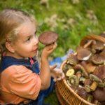 Як правильно зрізати гриби