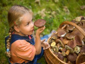 Загадки про їстівні гриби українською мовою