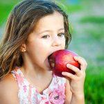 Дитячі загадки про яблуко українською мовою