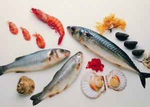 морепродукты, продукты, рыба