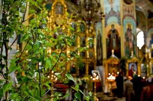 Вербное воскресенье: традиции и приметы