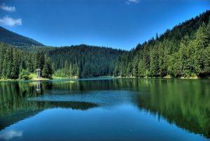 синевир, карпати, україна, природа, озеро, лес, весна