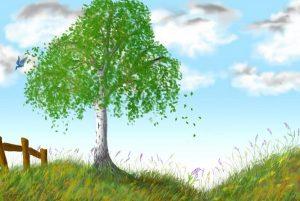 береза, лес, природа, весна, берізка