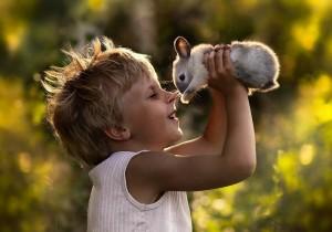Кролик для ребенка: как выбрать и ухаживать