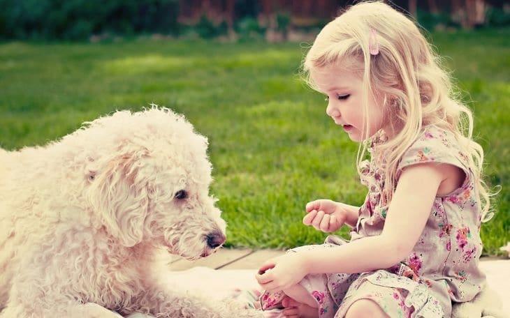 ребенок и животные