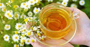 Ромашковый чай: польза и противопоказания