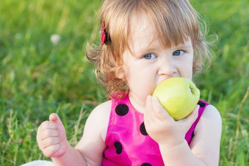 Питание для ребенка-аллергика