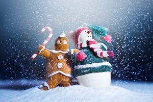 Популярные новогодние приметы
