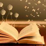книга, учеба, школа, читает