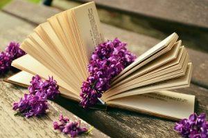 книги, учеба, школа, чтение, читает
