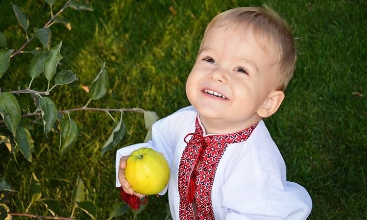 Маленький хлопчик в українській вишиванці